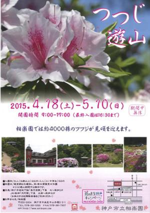 Tsutsuji2015